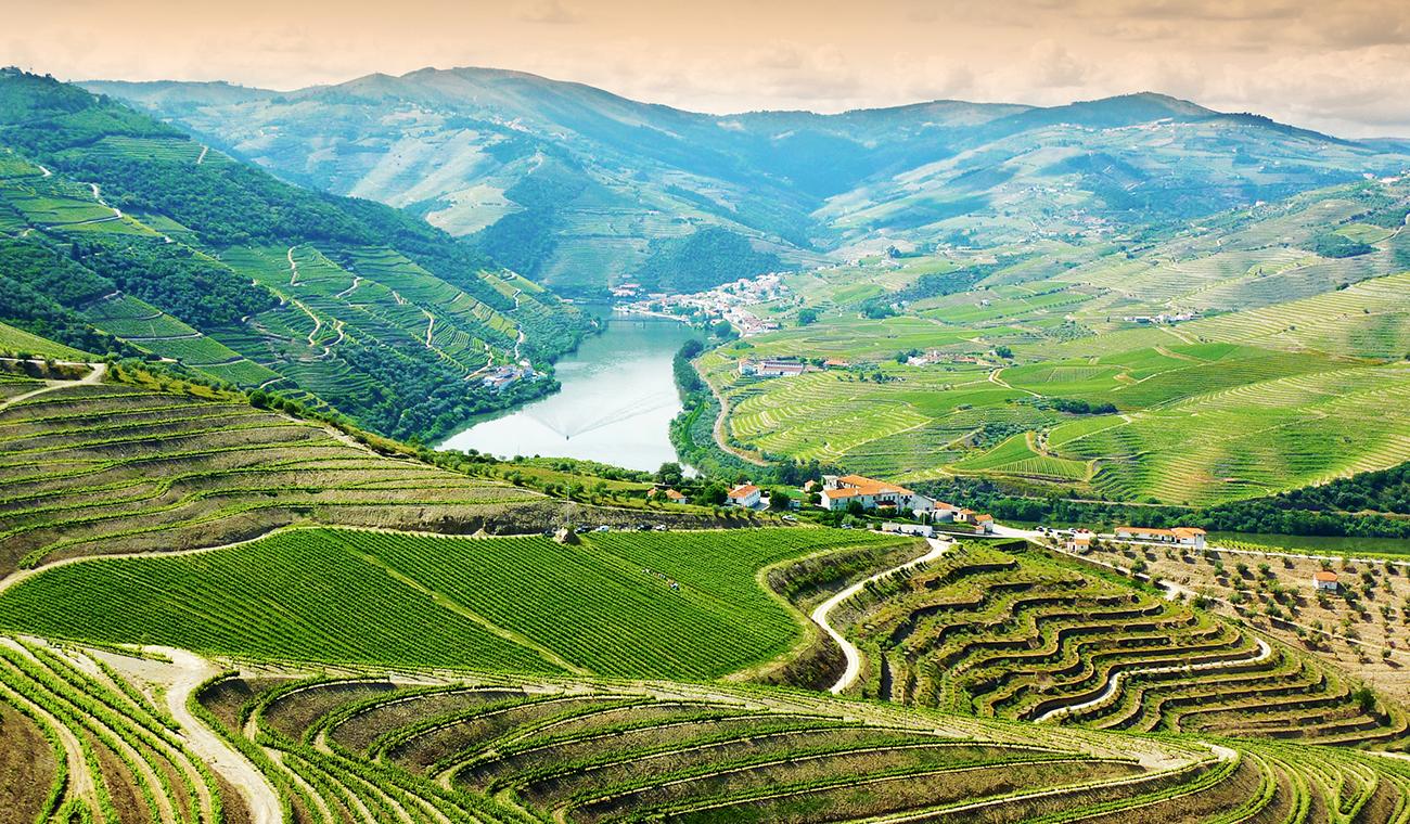 Vale Douro – Portugal