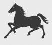 Logo Cavalinho