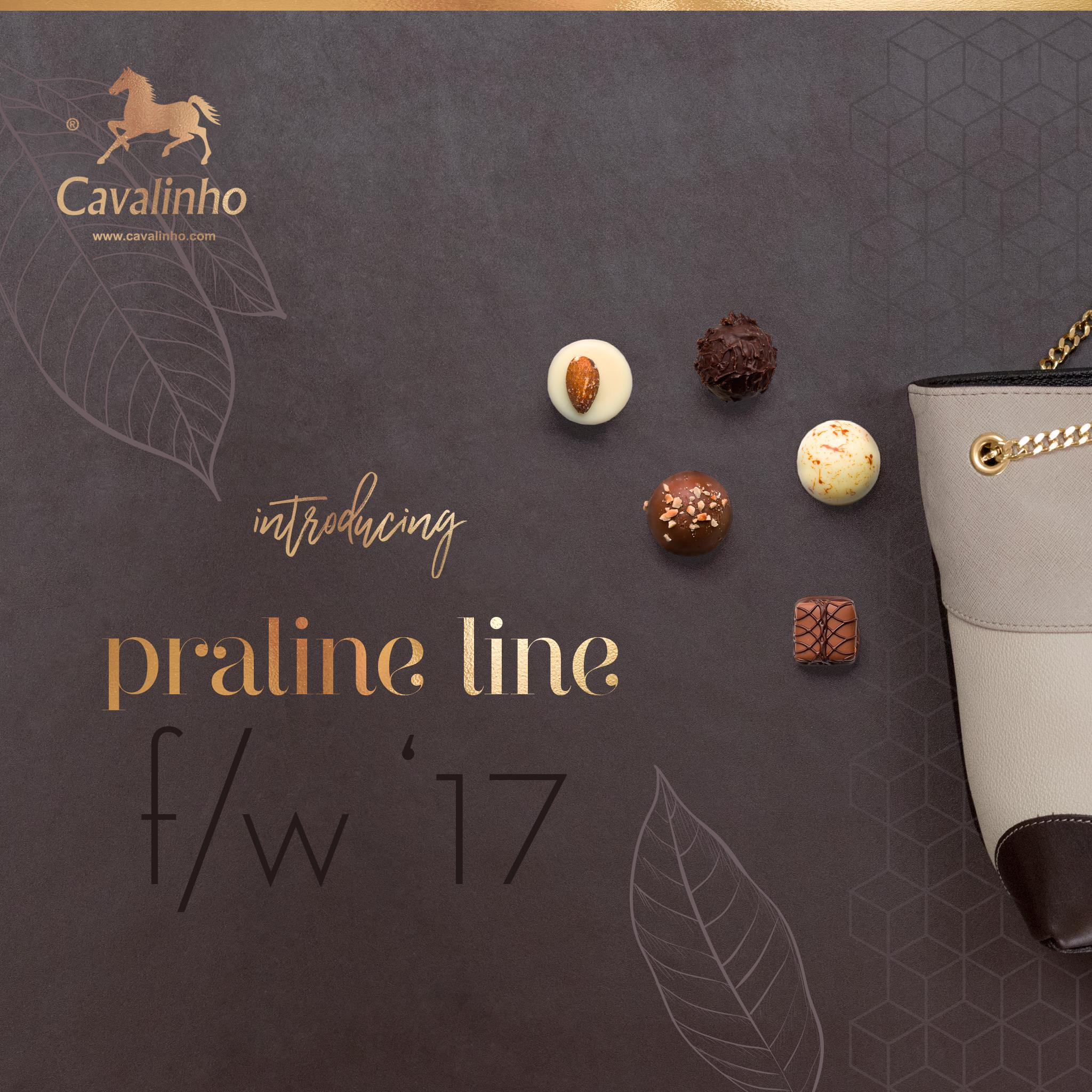Nova Coleção Outono/Inverno 2017 Cavalinho - Praline Line